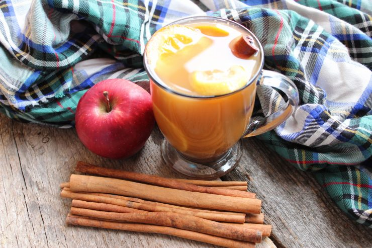 A clear glass mug of Hot Apple Cider sits on a wooden backdrop with cinnamon sticks and a whole, red apple beside it. Behind the mug is a green, blue, black, and white plaid cloth.